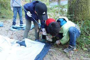 『親子キャンプ5』の画像