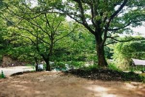 『高萩ふれあいの里フィッシングエリアキャンプ場』の画像